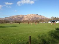Shinty Game